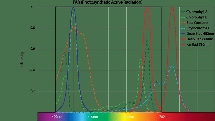 Optimale Pflanzenbeleuchtung nach PAR mit Deep Blue, Deep Red und Far Red LEDs für die Bildung von Chlorophyll, Beta Carotene und Phytochromes
